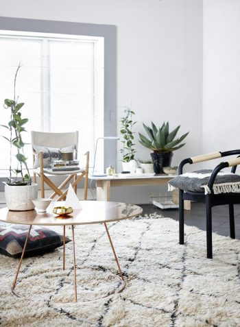 How using succulent plants can brighten up your living space