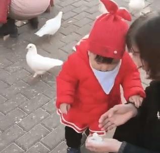 Hey bird! That's mine!