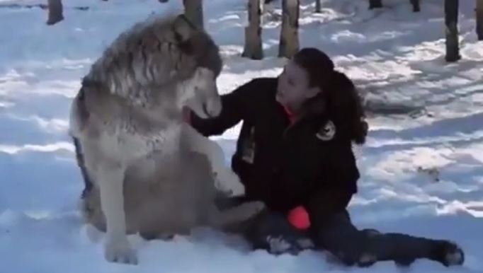 That's One Big Doggie  – Kidding